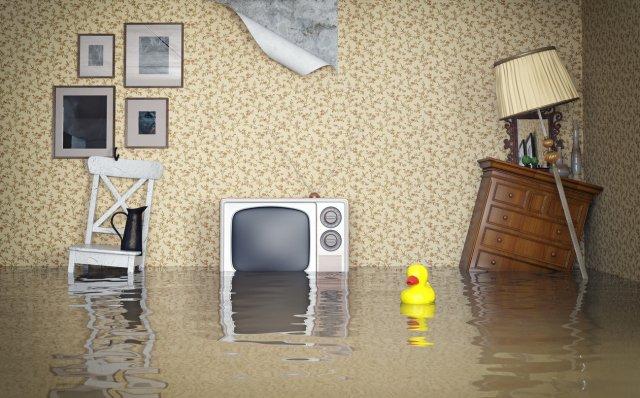 Flood Damage - Emergency Flood Services